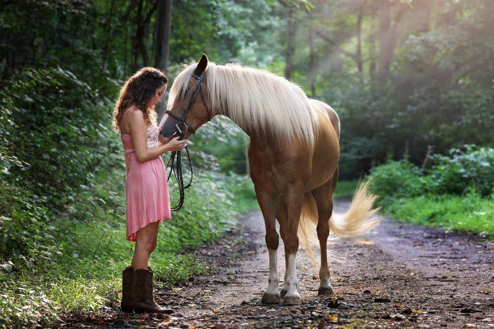 Bli vän med en häst